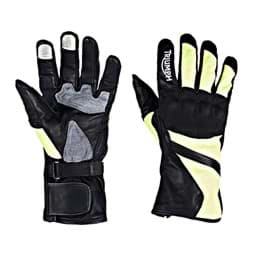 Picture of Triumph Bright Handschuhe